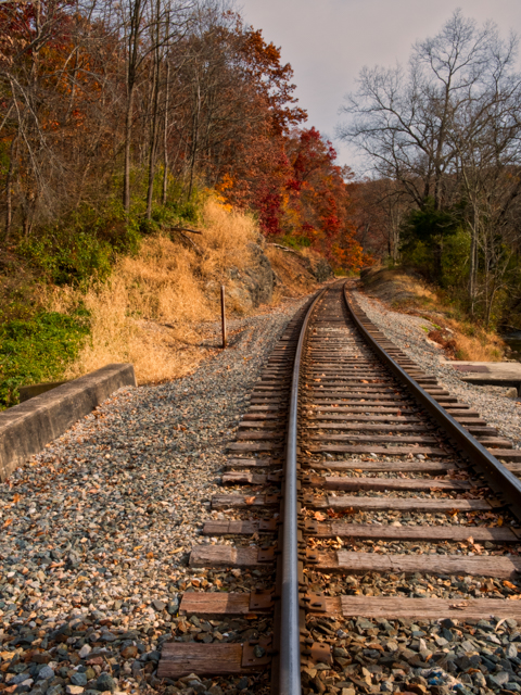 The tracks in the Fall